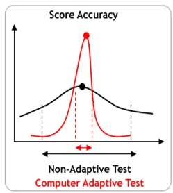 Computer adaptive tests